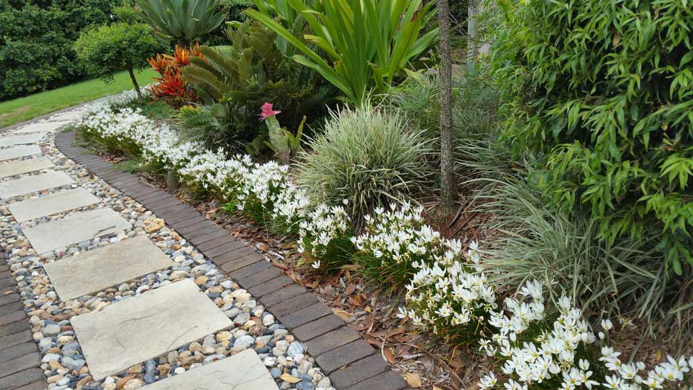 landscape gardening northern rivers