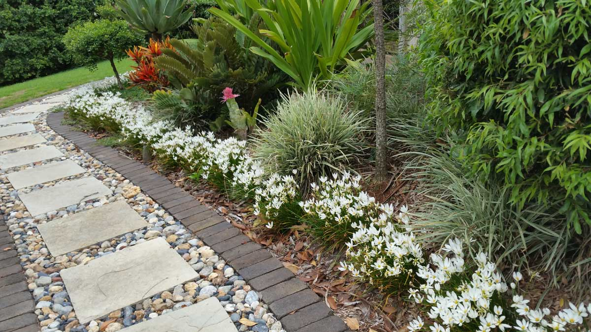 Byron Bay landscaping flowers