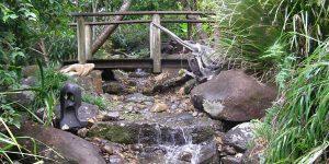 tweed coast landscaping water feature